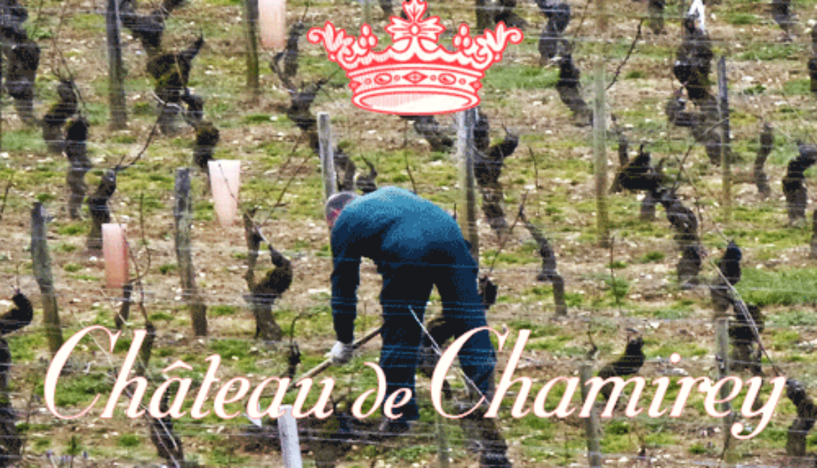 Chateau-Chamirey-Mercurey-En-Pierrelet-2011